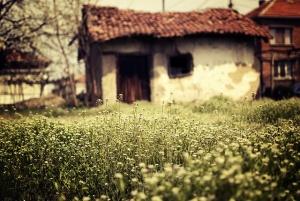 Снимка на winternana